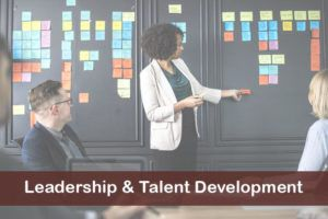 leadership-talent-development-overlay-3