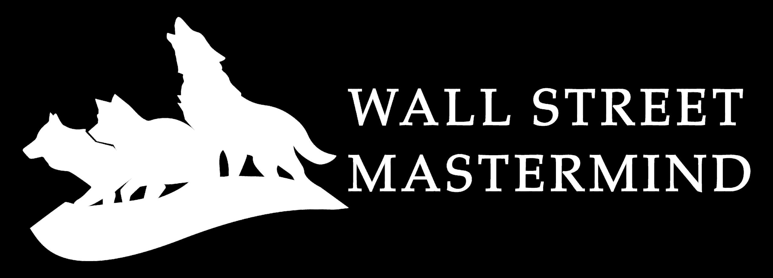 WSMM all white website logo (4)