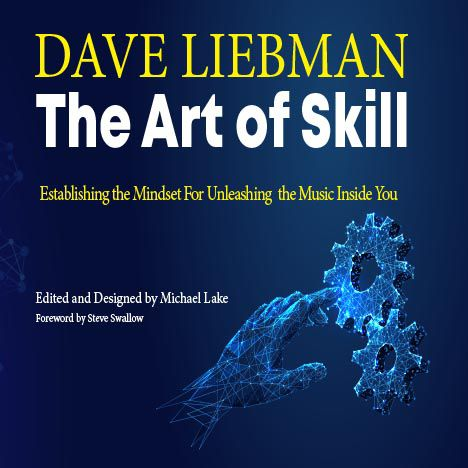 Art of Skill audiobook cover 468px
