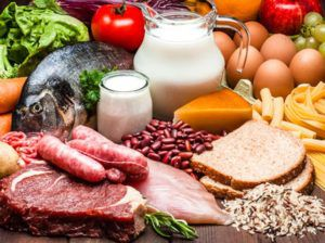 Why Protein is Vital to Your Diet