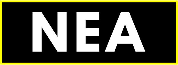 NEA Network Engineer Academy Logo