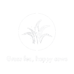 Grass Fed Cows - The Butter People (White)