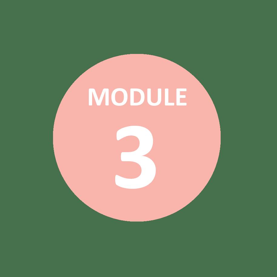 Module 3 alternativf Melbourne