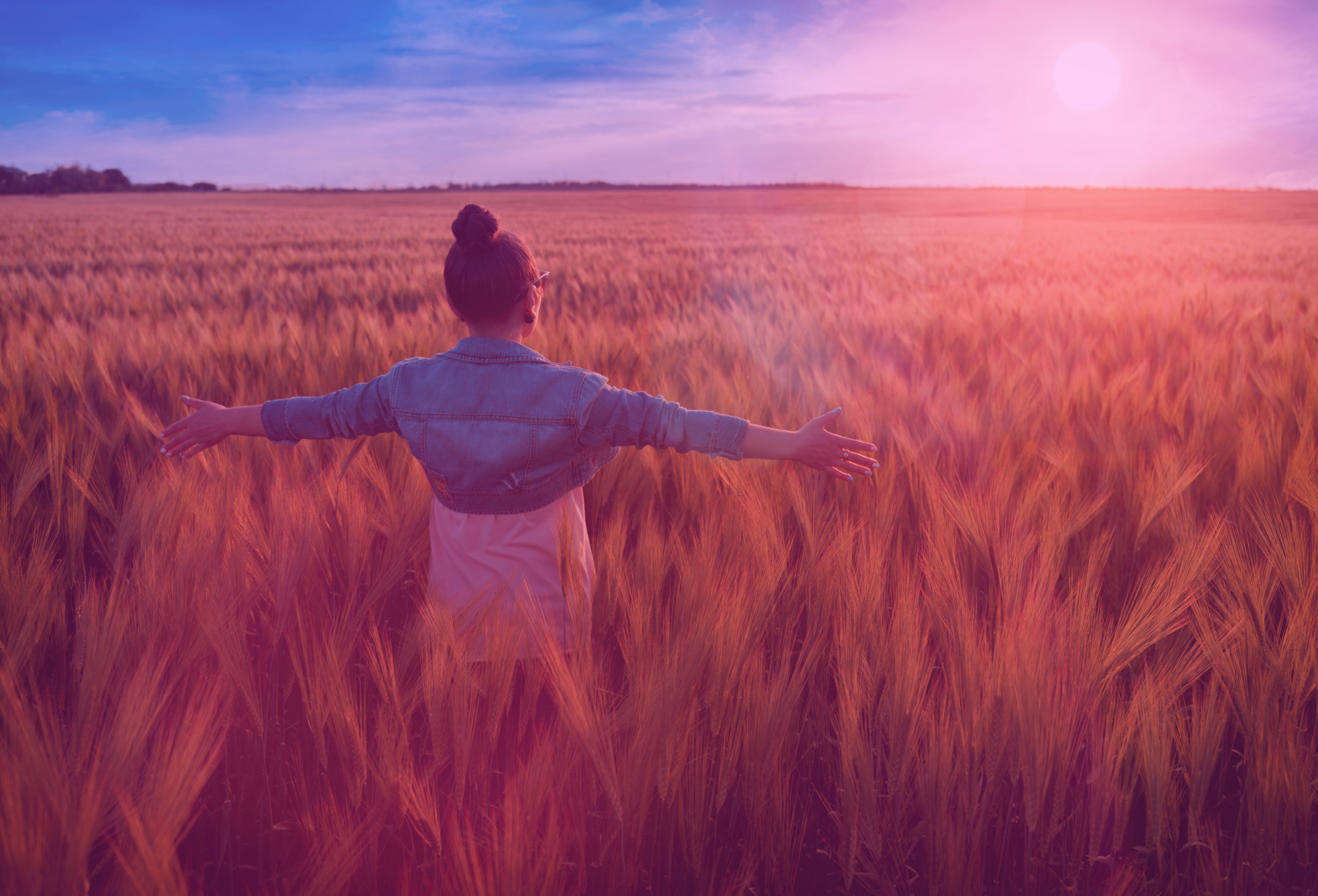 girl in wheat field at sunset