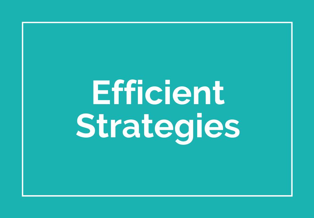 Mini Training Images - Efficient Strategies