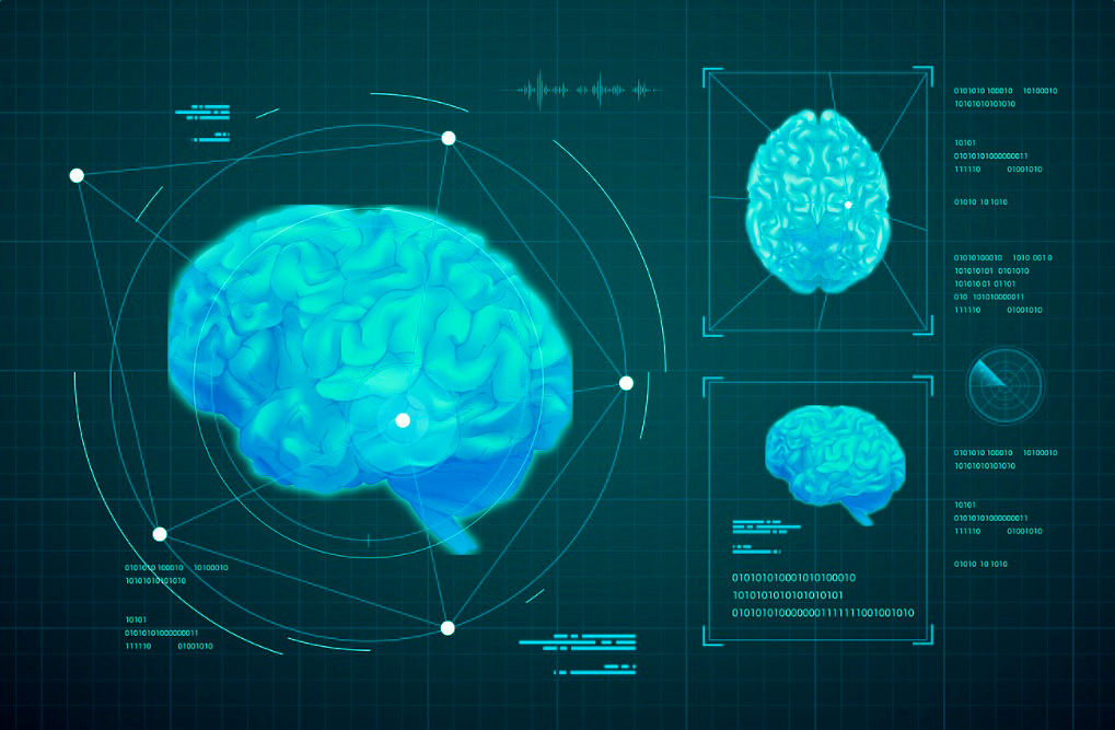 Brain 1 - rawpixel - edited